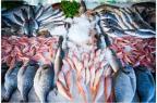 La principale source d'apport en vitamine D dans la population est le poisson qui contribue à 31% des apports chez les enfants et à 38% chez les adultes (source : Anses) [illustration].