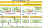 Traitement de la crise de migraine - Arbre décisionnel extrait de VIDAL Reco - Migraine (illustration).