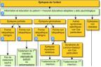 Reco Vidal Epilepsie : extrait de l'arbre décisionnel de prise en charge.