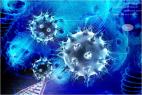 Représentation en 3D du virus de la grippe.