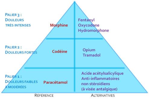 Première analyse sur 10 ans de l'évolution de l'utilisation des antalgiques en France