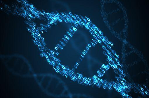 L'extrême variabilité inter-individuelle de l'activité DPD s'explique en partie par des facteurs génétiques (illustration).