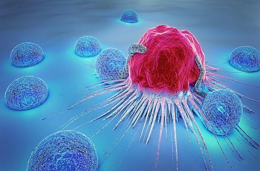 La mitomycine C est notamment utilisée dans la prise en charge de tumeurs de la vessie et d'adénocarcinomes de l'estomac, du pancréas, du côlon, du rectum, du sein et leurs métastases (illustration).