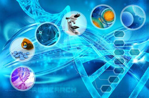 Un médicament  biosimilaire est un médicament biologique (fabriqué à partir de sources biologiques) similaire à un médicament biologique de référence, déjà autorisé en Europe et dont le brevet peut être copié (illustration).