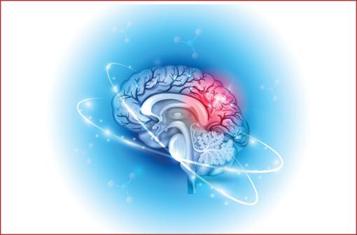 ANDROCUR et génériques (acétate de cyprotérone) : dispositif renforcé pour prévenir le risque de méningiome