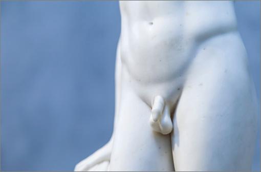 L'hypogonadisme est un défaut de l'appareil reproducteur résultant en une perte de fonction des testicules ou des ovaires (illustration).