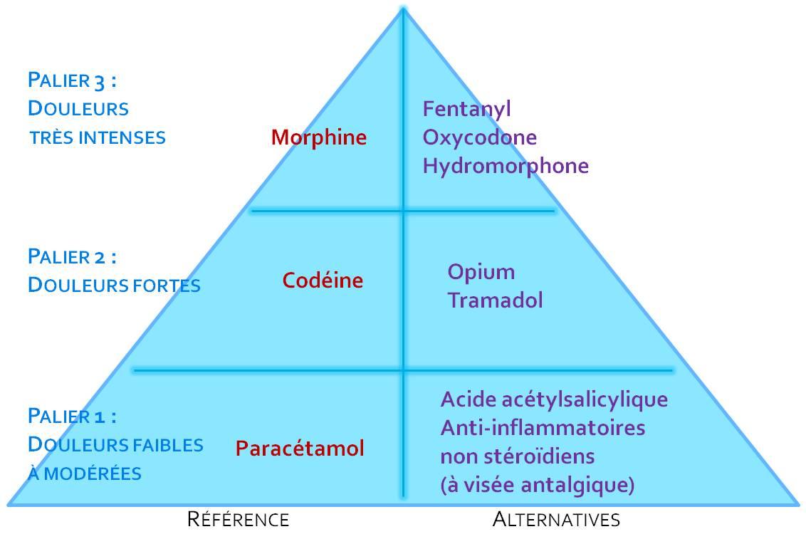 Classification des antalgiques par paliers selon l'Organisation mondiale de la santé (illustration).