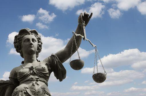 L'existence d'une juridiction administrative s'explique par la nécessité de juger et de contrôler l'administration et de régler les conflits avec celle-ci (illustration).