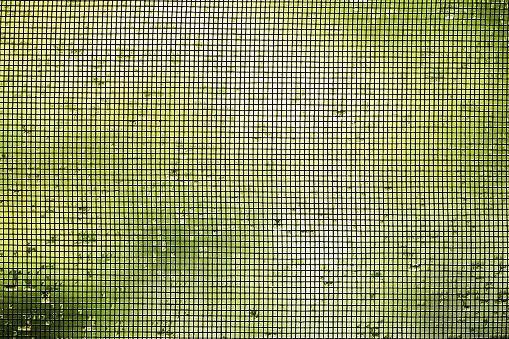 L\'utilisaiton d\'une moustiquaire, imprégnée ou non d\'insecticide, reste la meilleure protection contre les insectes vecteurs dans les pays à risques (illustration).