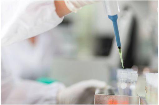 La société GVK Bio réalise des essais cliniques de bioéquivalence sur son site d\'Hyderabad en Inde.