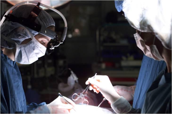 SIMULECT est strictement indiqué dans la prévention du rejet aigu après transplantation rénale allogénique de novo.