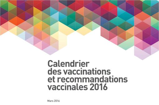 Calendrier des vaccinations et des recommandations vaccinales 2016 (illustration).