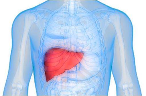 CERTICAN 1 mg comprimé répond à la posologie préconisée chez les patients adultes transplantés hépatiques, en initiation de traitement (illustration).
