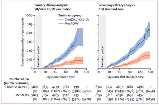 The Lancet publie une analyse intermédiaire des essais cliniques sur le vaccin Oxford-AstraZeneca contre la COVID-19 (en rouge, incidence cumulée des cas dans les groupes vaccinés ; en bleu, dans les groupes placebo - À gauche après 2 injections, à droite après une seule injection) (illustration).