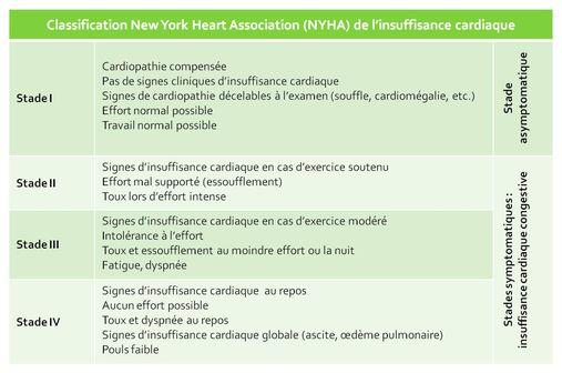 La classification de la NYHA permet d'apprécier la sévérité fonctionnelle de l'insuffisance cardiaque (illustration).