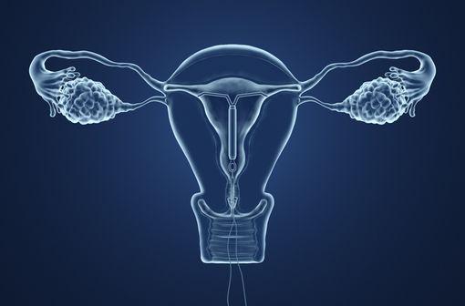 L'accès à une contraception adaptée pour toutes les femmes qui décident d'y avoir recours est un objectif de santé publique (illustration).