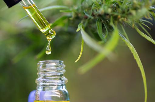 Le 7 octobre 2020, un décret a autorisé une expérimentation sur la mise à disposition de cannabis thérapeutique dans 5 indications.