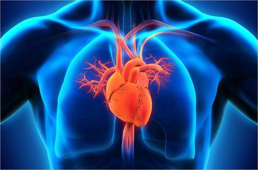 ENTRESTO est indiqué dans le traitement de l'insuffisance cardiaque chronique symptomatique à fraction d'éjection réduit (illustration).