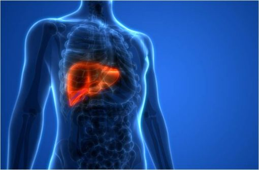 EPCLUSA et MAVIRET peuvent désormais être prescrits par tous médecins dans le traitement curatif de l'hépatite C (illustration).