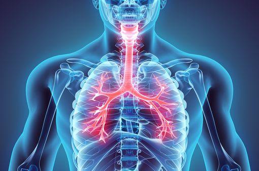 EUPHYLLINE LA est indiqué dans le traitement symptomatique continu de l'asthme et des autres BPCO (illustration).