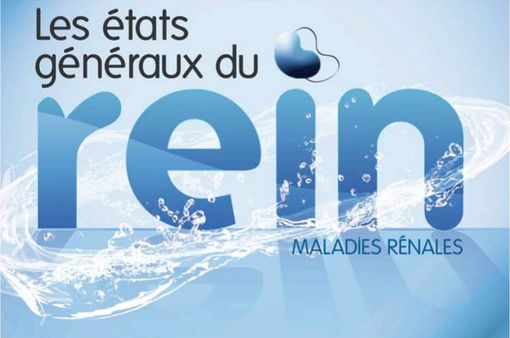 """Les Etats Généraux du Rein, """"l'un des plus beaux exemples de démocratie sanitaire"""" en France, selon Marisol Touraine (illustration)."""