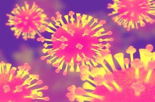 Représentation en 3D de virus de la grippe (illustration).