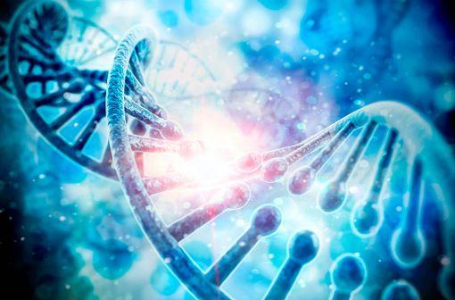 Pour être actif, le fluorouracile doit être métabolisé dans la cellule en subissant les mêmes réactions enzymatiques que les nucléotides normaux (illustration).