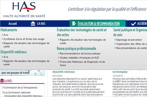 Capture d'écran du site de la HAS (illustration).