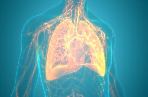 IMFINZI est indiqué dans la prise en charge de certains cancers bronchiques (illustration).