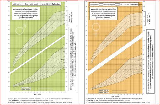 Courbes de croissance des filles (à droite) et des garçons (à gauche) de 1 à 18 ans en termes de poids en kg et de taille en cm (illustration).
