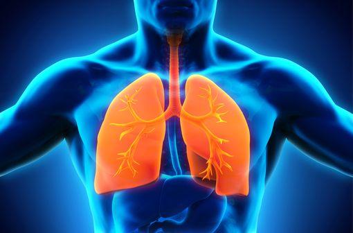 L'association de formotérol et de dipropionate de béclométasone améliore les symptômes d'asthme et la fonction respiratoire, et réduit les exacerbations (illustration).
