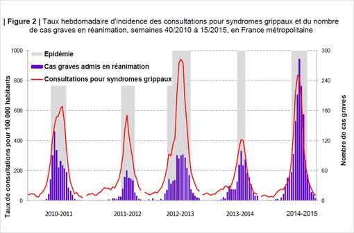L'épidémie grippale de l'hiver dernier s'est caractérisée par un nombre plus important de cas graves (© InVS, mai 2015)