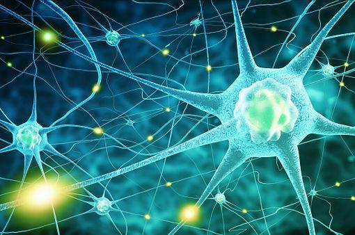 Une crise d'épilepsie se caractérise par une altération fonctionnelle transitoire au sein d'une région du cerveau ou de sa totalité (illustration).