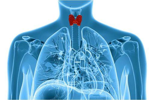 La plupart du temps, le traitement de l'hypothyroïdie fait appel à une substitution journalière en hormones thyroïdiennes, par voie orale (illustration).