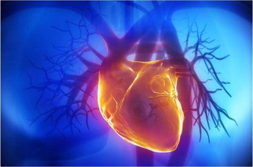 LANGORAN est indiqué dans le traitement préventif de la crise d'angor et le traitement de l'insuffisance cardiaque gauche ou globale en association aux autres thérapeutiques usuelles (illustration).