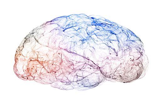 LYRICA et génériques sont indiqués dans la prise en charge des douleurs neuropathiques, de certaines formes d'épilepsie et du trouble anxieux généralisé (illustration).