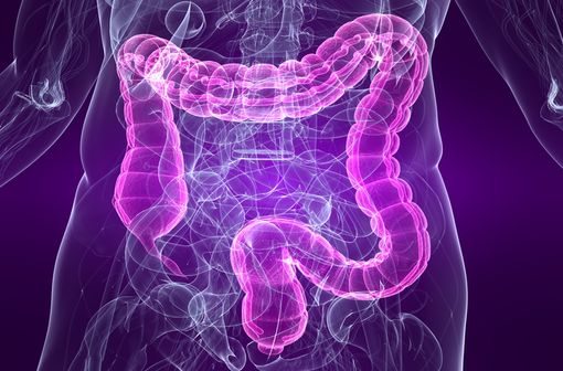 La constipation est un effet indésirable fréquent des traitements chroniques par opioïdes (illustration).