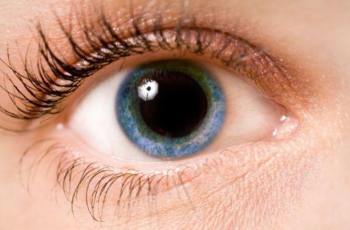 MYDRIATICUM est indiqué pour l'obtention d'une mydriase à but diagnostic (fond d'oeil) ou thérapeutique (illustration).