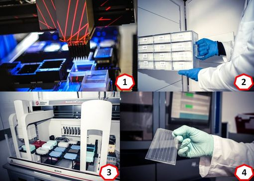 MetaGenoPolis (photos © INRA) : (1) Robot de triage des clones dans MetaFun (2) Conservation des échantillons dans SAMBO (3) Automate de séquençage de MetaQuant (4) Un milliard de séquences sur une petite plaque…