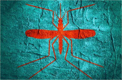 NIVAQUINE est notamment indiqué dans le traitement curatif et préventif du paludisme (illustration).