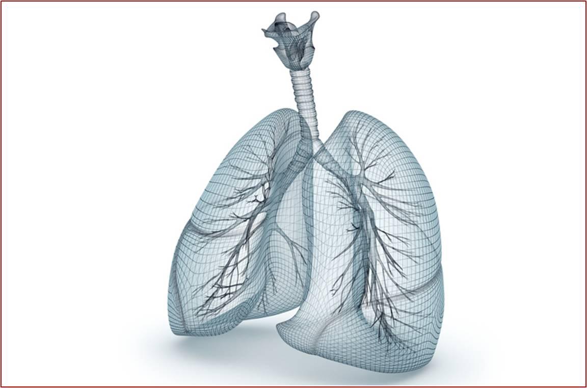 NUCALA est un nouvel anti-asthmatique indiqué chez l'adulte en traitement additionnel dans l'asthme sévère réfractaire à éosinophiles (illustration).
