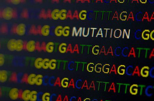 La mutation F508del du gène CFTR, expose à une forme relativement sévère de mucoviscidose (illlustration).