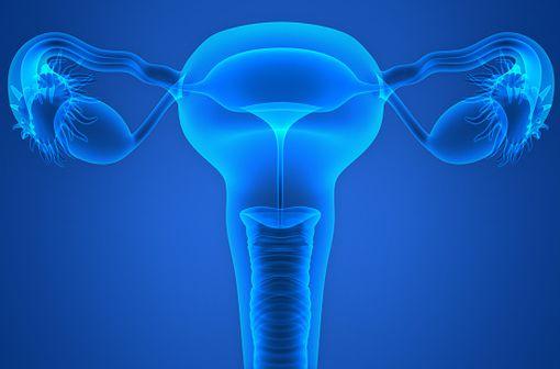 PERGOVERIS est indiqué pour stimuler le développement folliculaire chez les femmes adultes qui présentent un déficit sévère en LH et en FSH (illustration).