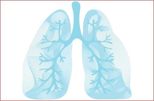 REVINTY ELLIPTA est indiqué dans la prise en charge de l'asthme et de la BPCO (illustration).