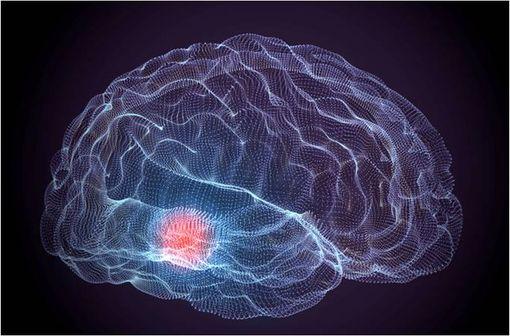 La maladie de Parkinson est une maladie dont la cause est la dégénérescence du groupe de neurones produisant la dopamine dans la substance noire (illustration).