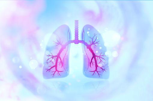 SPIRIVA RESPIMAT et SPIOLTO RESPIMAT sont indiqués dans la prise en charge de l'asthme et/ou la BPCO (illustration).