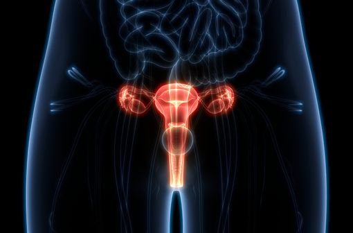 SURGESTONE est indiqué dans le traitement des troubles gynécologiques dus à une insuffisance lutéale (illustration).