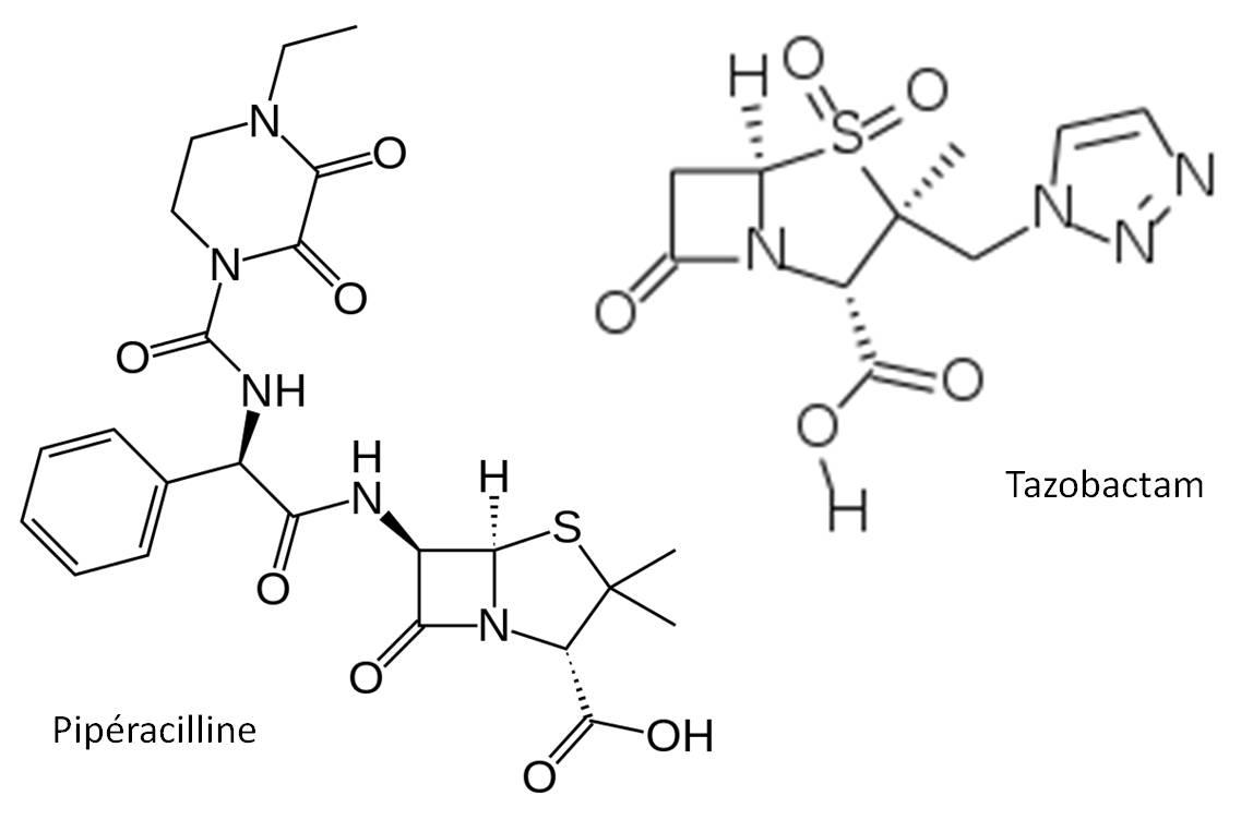 TAZOCILLINE se compose de 2 antibiotiques, la pipéracilline (à gauche) et le tazobactam (à droite) [images : @ Wikimedia].
