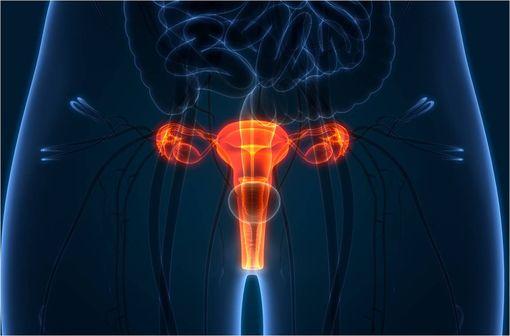 VABLYS 10 mg comprimé vaginal est indiqué dans le traitement local de la vaginose bactérienne (illustration).