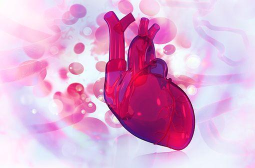 XARELTO n'est pas autorisé dans la thromboprophylaxie chez les patients porteurs de valves cardiaques prothétiques, y compris les patients ayant bénéficié d'un TAVI (illustration).